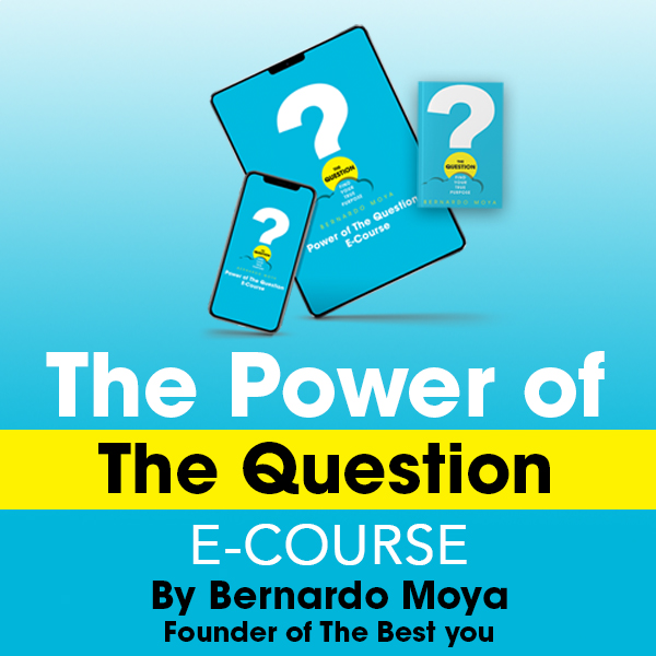 The Power of The Question
