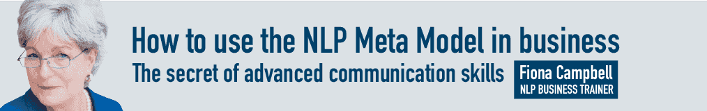 Fiona Campbells's How to Use the NLP Meta Model in Business